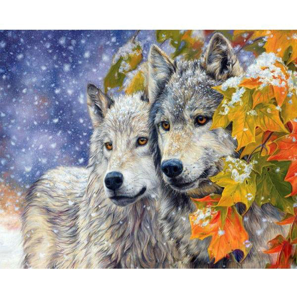 Frame Wolf Animals Painting By Number