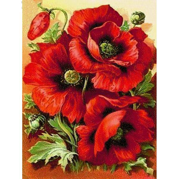 Full square Drill 5D Diamond Painting Poppy Flower