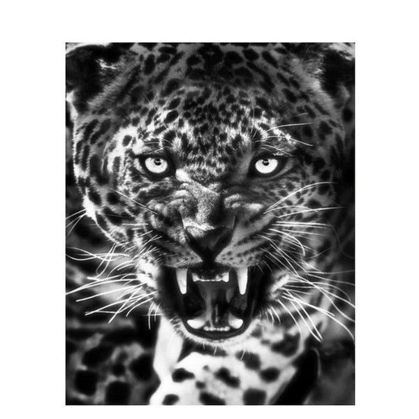 Frame Tigers Painting By Numbers Black White