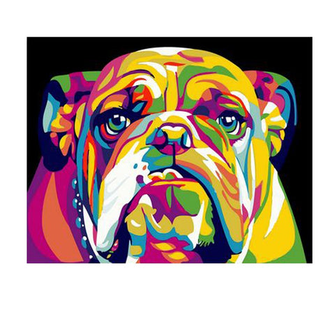 Painting By Numbers Bull Dog