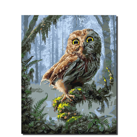 "Frame Painting By Numbers ""Owl"""
