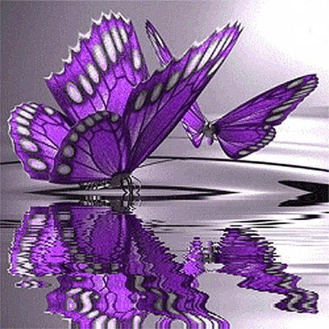 "Full Square 5D Diamond Painting ""Butterfly Point Water"""