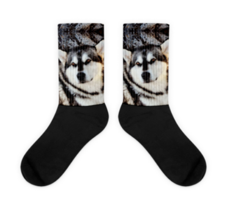 Custom Sublimation Socks with Your Dogs Photo