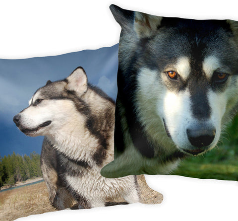 Your Custom Photo on a Throw Pillow - Dogs, Cats, Whatever You Want!