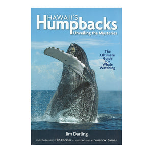 Hawaiʻi's Humpbacks: Unveiling The Mysteries