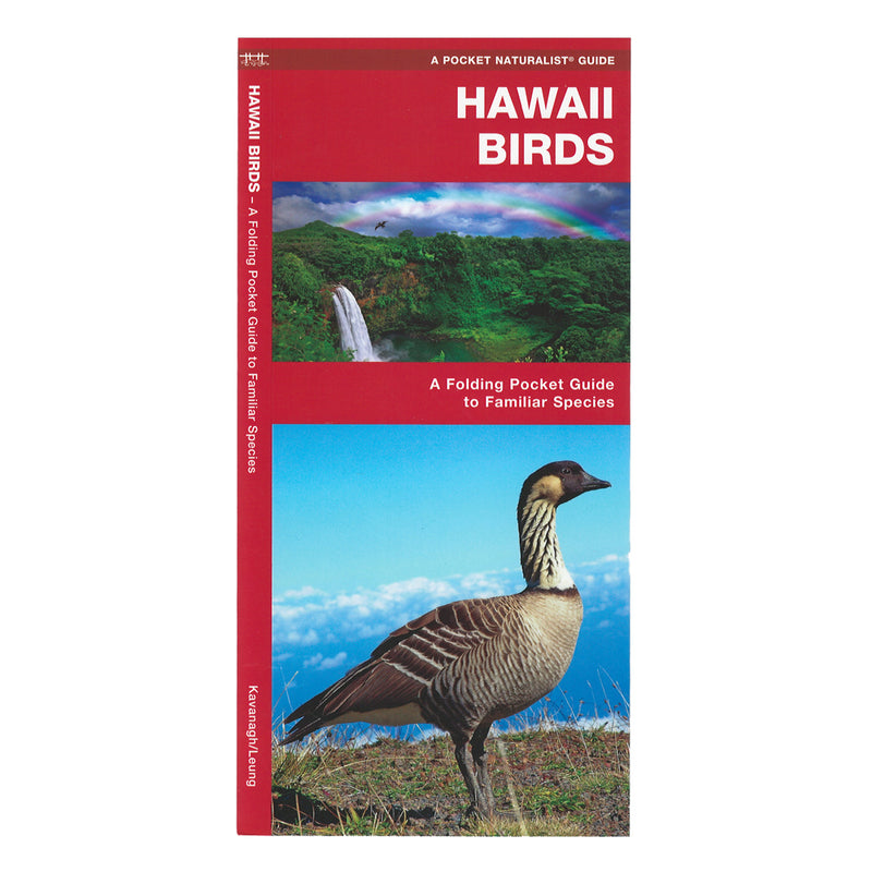 ID Card: Hawaiʻi Birds, an Introduction to Familiar Species