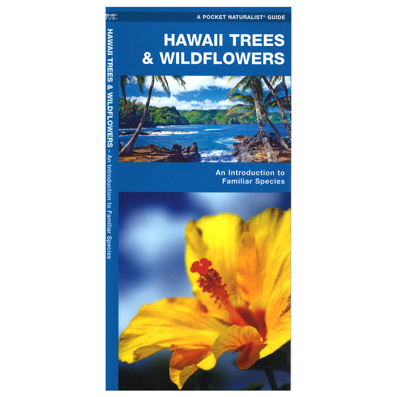 Cover image shows yellow hibiscus and an image of an ocean scene with green cliffs and coconut palms.