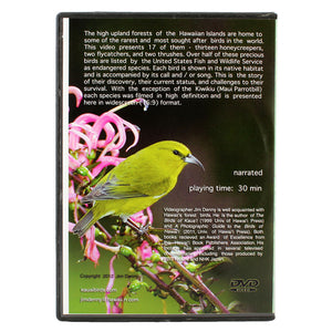 DVD: Birds of the Rainforest