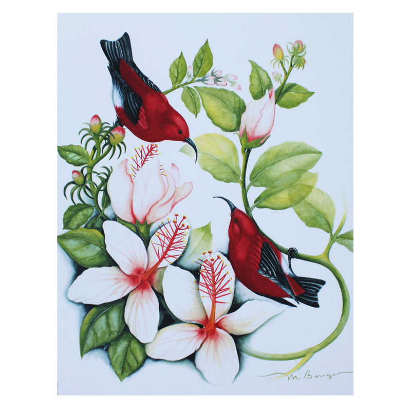 Two ʻapapane perch on the branches of a native Hawaiian white and pink hibiscus in this art print by Marian Berger.