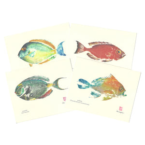 Notecard Set: Indigenous Fish of Hawaiʻi Ahihi