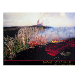 Poster: Puʻu ʻŌʻō Eruption