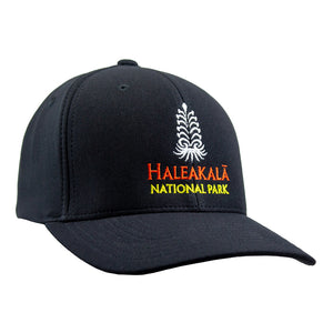100% cotton twill ball cap, black, with Haleakalā silversword embroidered in white on front and Haleakalā National Park embroidered below that in orange and gold.