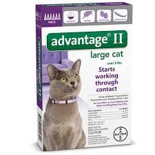 Advantage II Large Cat Over 9 lbs