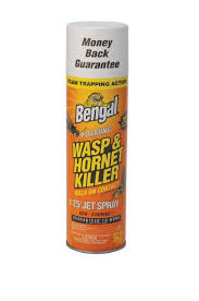 Bengal Foaming Wasp and Hornet Killer