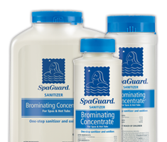 Bioguard Spaguard Brominating Concentrate