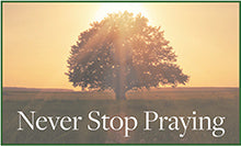 Never Stop Praying Weekly Reflection Questions
