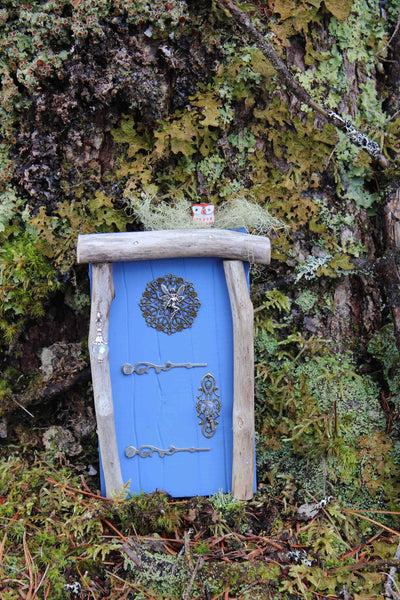 outdoor blue fairy door, front, in the woods