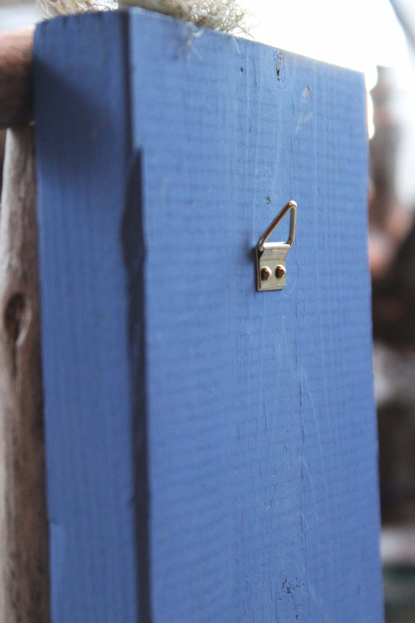 blue fairy door, back