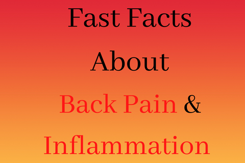 fast facts about back pain