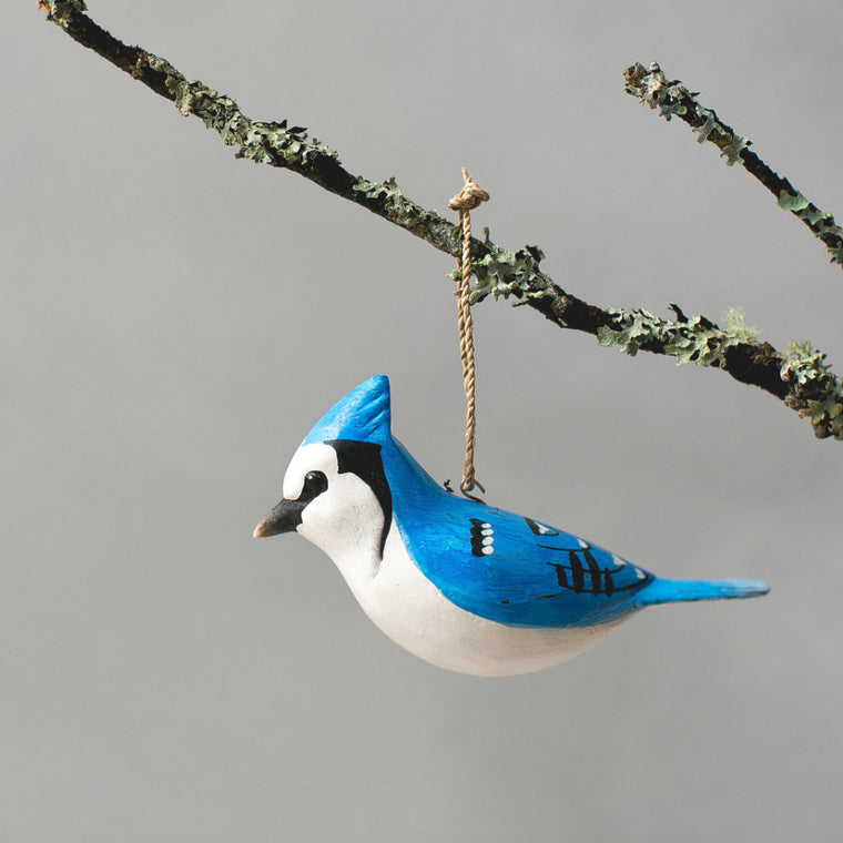 Hanging Blue Jay