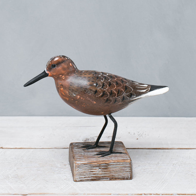 Red Knot Straight - aka Moon Bird