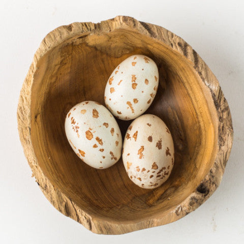 Nest Bowl with Kestrel Eggs