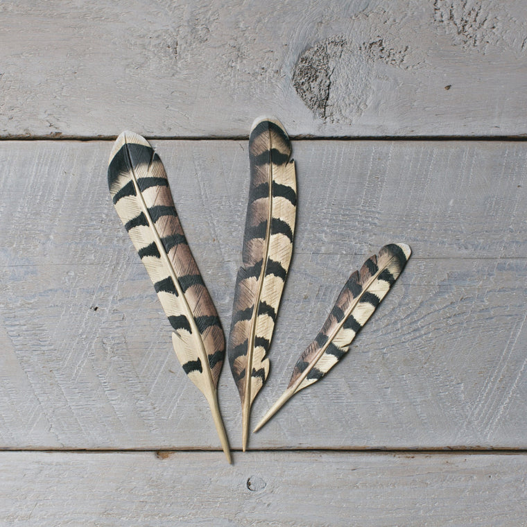 Woodpecker Feather set/3