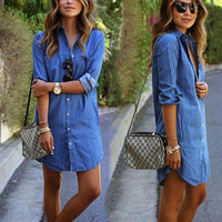 Reina Denim Dress