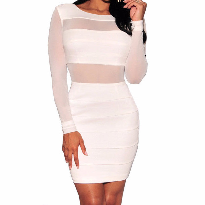 Elegant Mesh Mini Dress