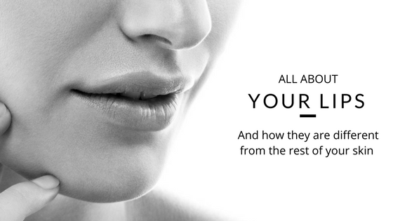 ALL ABOUT YOUR LIPS AND HOW THEY ARE DIFFERENT FROM THE REST OF YOUR SKIN