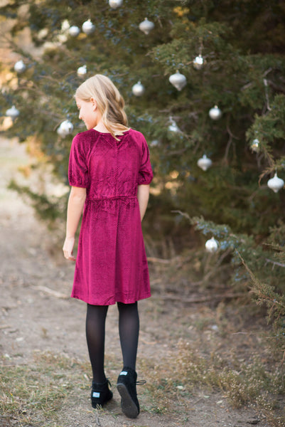 Farrah Sparkly Velvet Dress in Burgundy