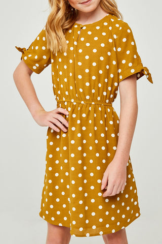 Abbigal Polka Dot Dress