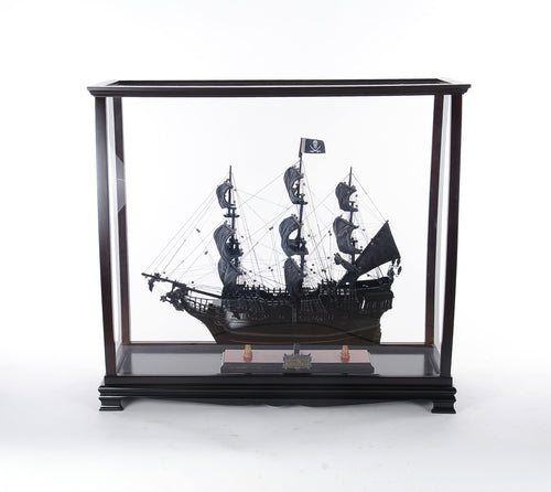 Display case for tall ships   medium  P006