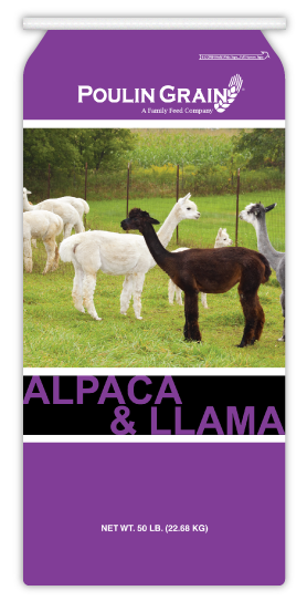 Alpaca/Llama Milk and Cria feed bag