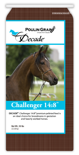 Decade Challenger 14:8 Horse Feed 50lb bag