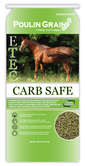 E-Tec Carb-Safe Soft Pellet Horse Feed 50lb bag
