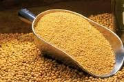 Soybean Meal 48%