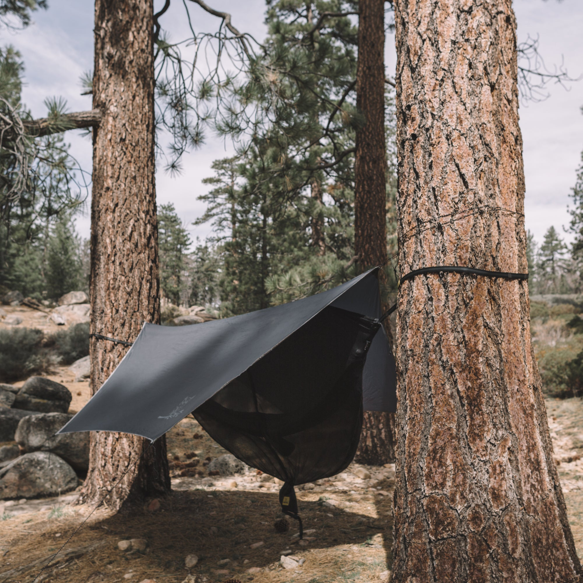 Tarp Tips: How to Maximize Your Shelter with the Wisefly Rain Tarp!