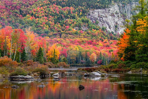 fall-landscape-of-the-green-mountain-national-forest