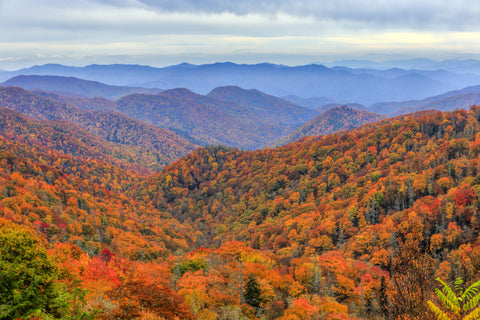 fall-landscape-of-the-great-smoky-mountains-national-park