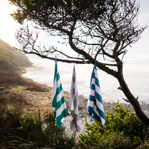 beach towels hanging on trees