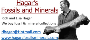 Hagars Fossil and Minerals