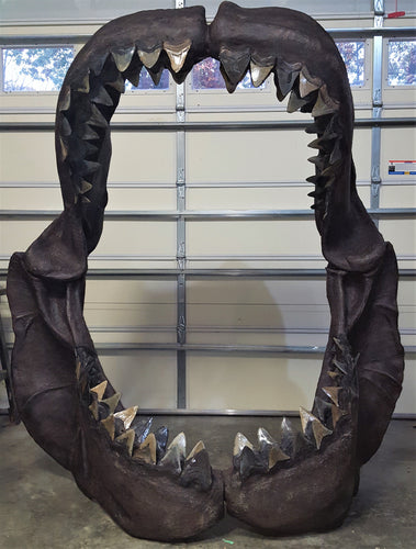 Megalodon Shark Jaw - Available Soon