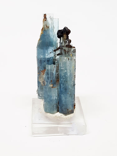 Aquamarine with Black Schorl Tourmaline and Hematite