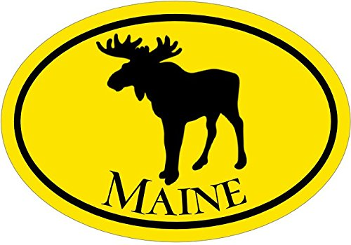 WickedGoodz Oval Yellow Maine Vinyl Decal - Moose Bumper Sticker - Perfect Vacationer Gift-WickedGoodz