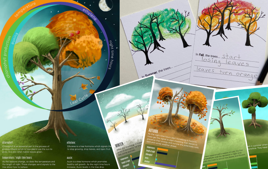 Educational Seasonal Leaf Study (part of HP's Back to School campaign)