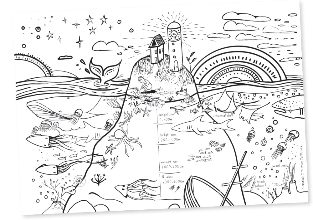 Colouring Page: Ocean Zones