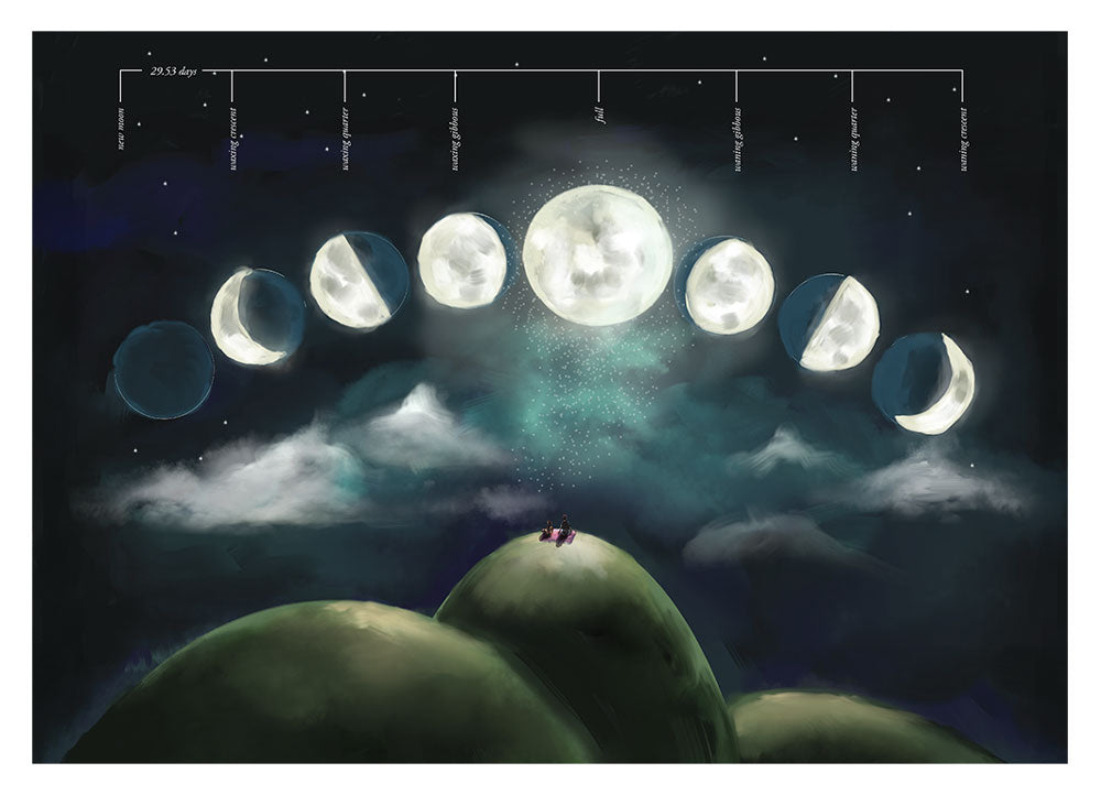 Moon Phases Educational Poster