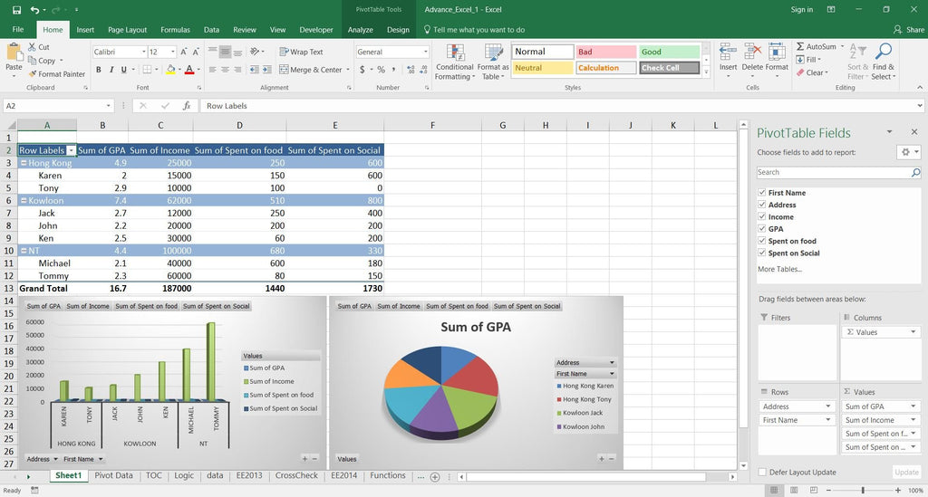 Excel Professional2