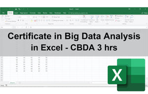 Certificate in Big Data Analysis in Excel